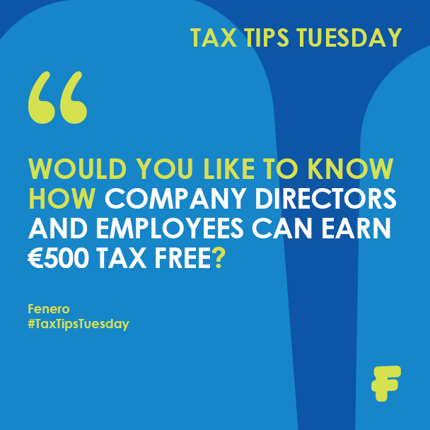 Would you like to know how company directors and employees can earn €500 tax free?